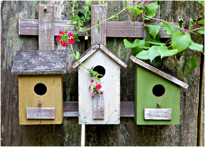 Simple Bird House