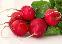 How to Keep Radishes Fresh