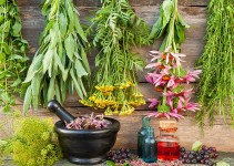 5 Best Herbs for an Indoor Herb Garden