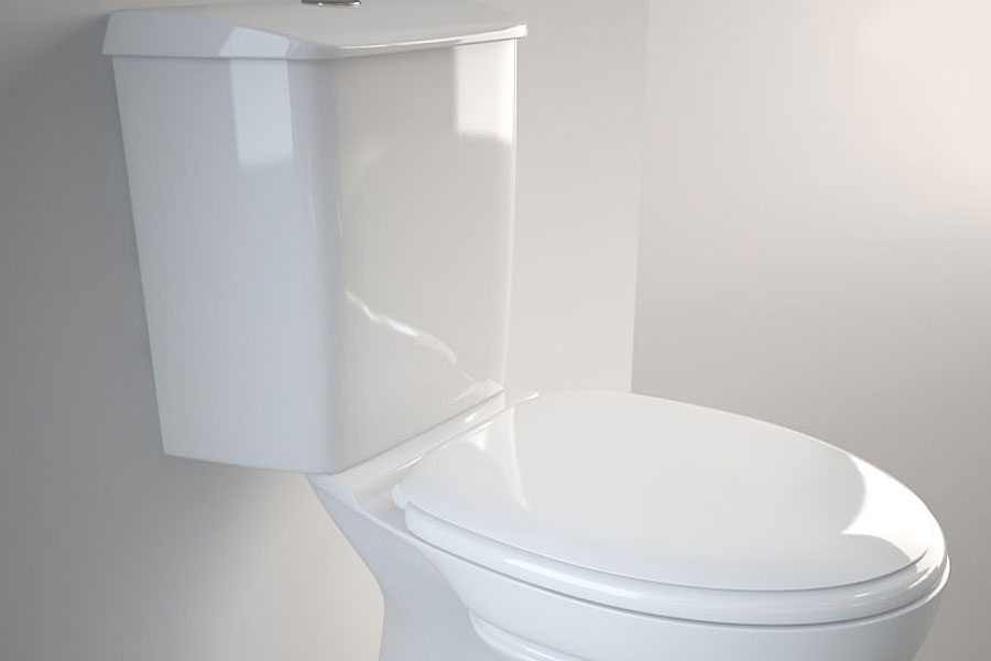 What is the History of the Flush Toilet